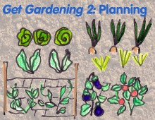 Frannie's gardening guide part two: planning your garden