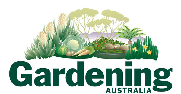Frugal frannie frannie s gardening guide part five for Gardening 101 australia