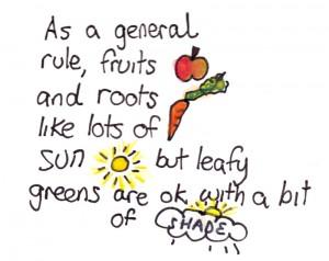general-rule
